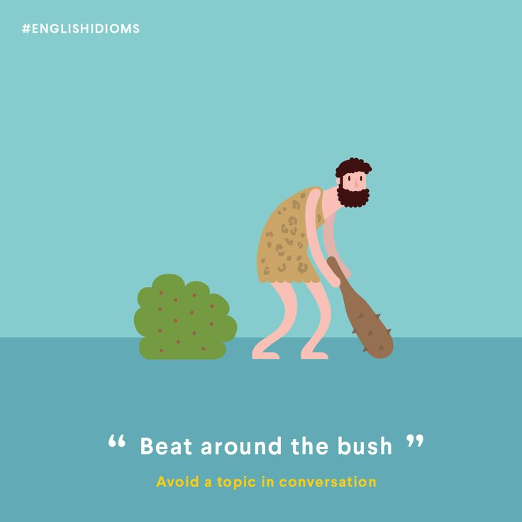 beat around the bush expression in english
